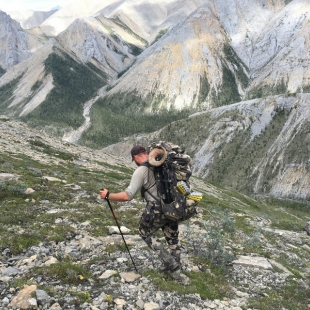 Dallsheep Moose Caribou Hunts